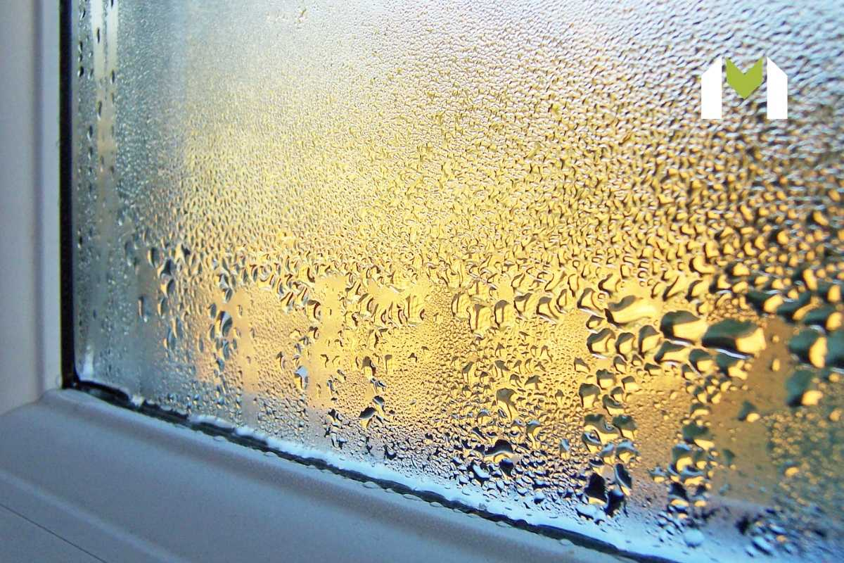 What Causes Moisture in Buildings